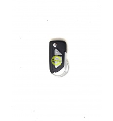 SHELL DS CITROEN 3 BUTTONS CLIP BATTERY VA2